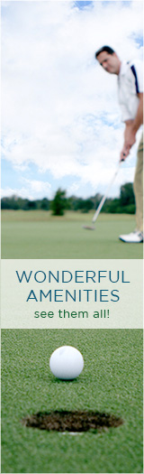 All Amenities Golf
